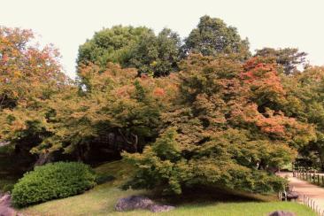kurakuen-garden-63