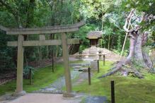 kurakuen-garden-77