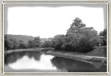 okoyama-castle-4