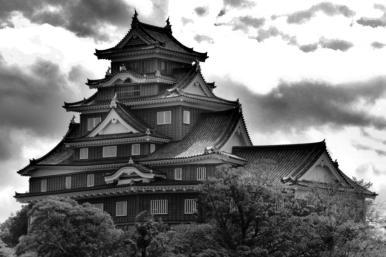 okoyama-castle-6