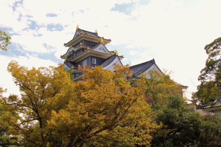 okoyama-castle-9
