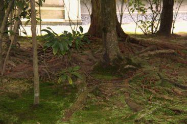 ryoan-ji-temple-13
