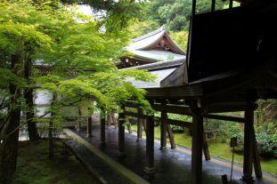 ryoan-ji-temple-14