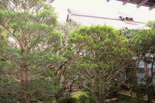 ryoan-ji-temple-15