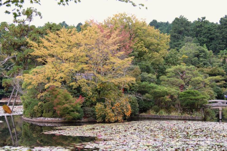 ryoan-ji-temple-2