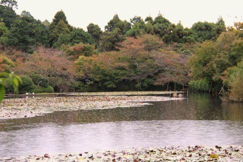 ryoan-ji-temple-23
