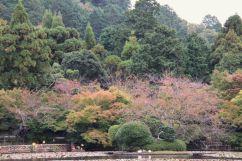 ryoan-ji-temple-26
