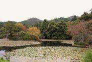 ryoan-ji-temple-29