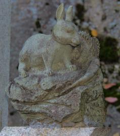 senko-ji-temple-34