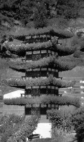 senko-ji-temple-42