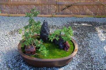 senko-ji-temple-43