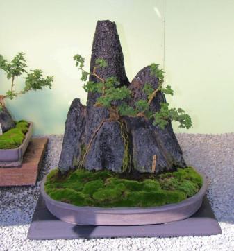 senko-ji-temple-52