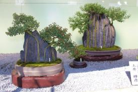 senko-ji-temple-54