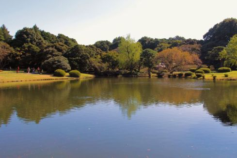 shinjuku-gyoen-garden-112