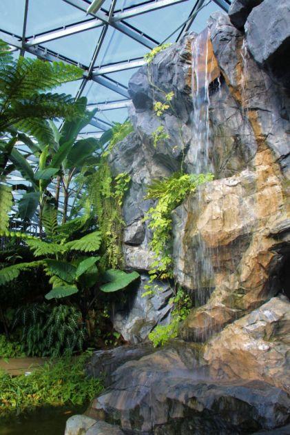 shinjuku-gyoen-garden-18