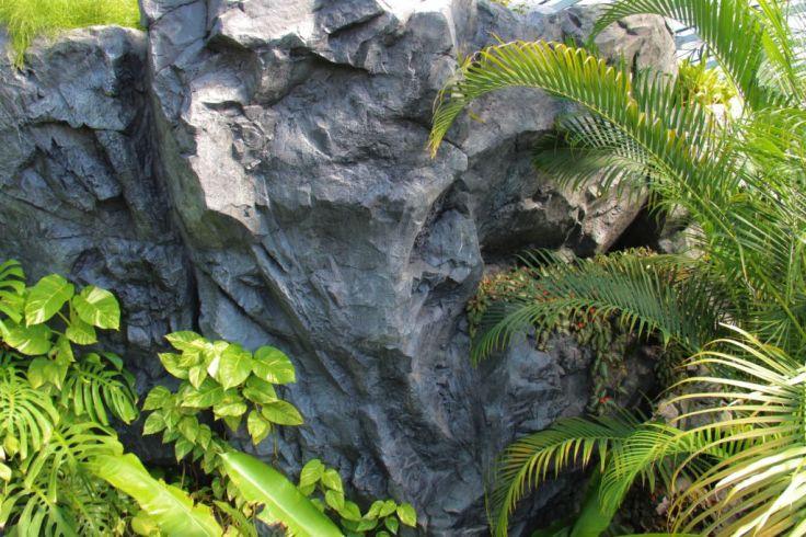 shinjuku-gyoen-garden-34
