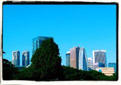 shinjuku-gyoen-garden-43