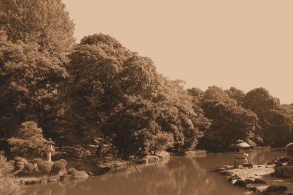 shinjuku-gyoen-garden-49