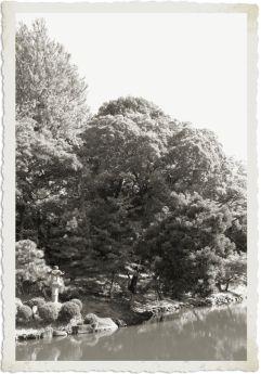 shinjuku-gyoen-garden-52
