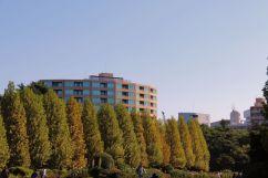shinjuku-gyoen-garden-66