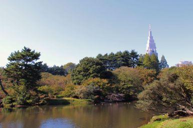 shinjuku-gyoen-garden-68