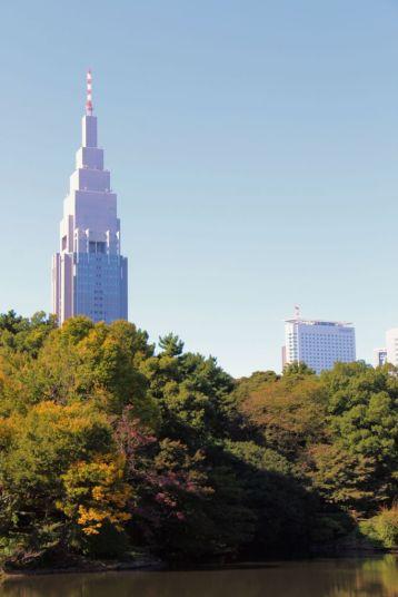 shinjuku-gyoen-garden-74