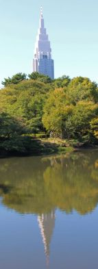 shinjuku-gyoen-garden-77