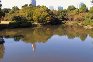 shinjuku-gyoen-garden-78