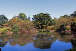 shinjuku-gyoen-garden-80