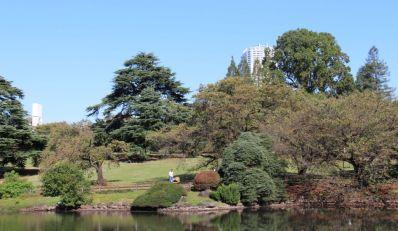 shinjuku-gyoen-garden-83