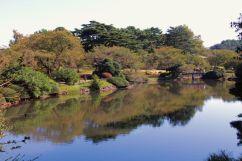 shinjuku-gyoen-garden-85