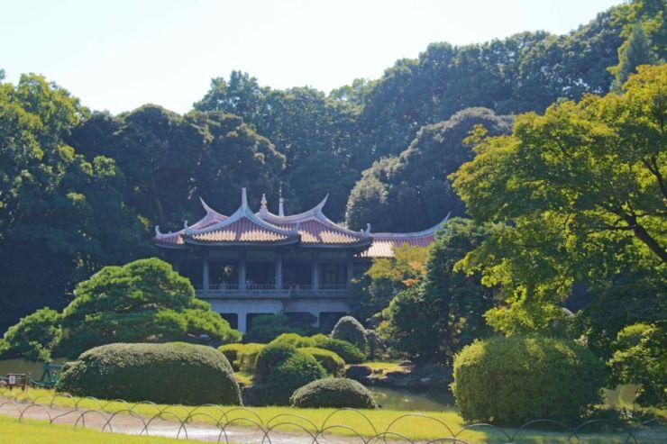 shinjuku-gyoen-garden-91