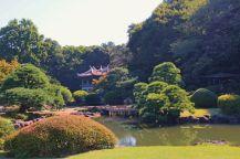 shinjuku-gyoen-garden-96