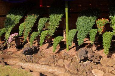 shinjuku-gyoen-garden-98