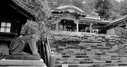 suwa-shrine-4