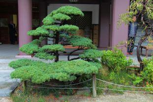 tocho-ji-temple-20