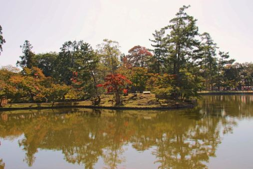 todai-ji-temple-48