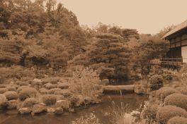 toji-in-temple-10