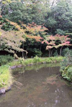 toji-in-temple-18