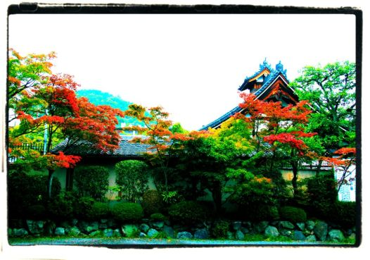toji-in-temple-3