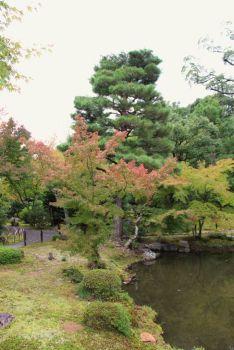 toji-in-temple-30