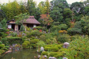 toji-in-temple-31