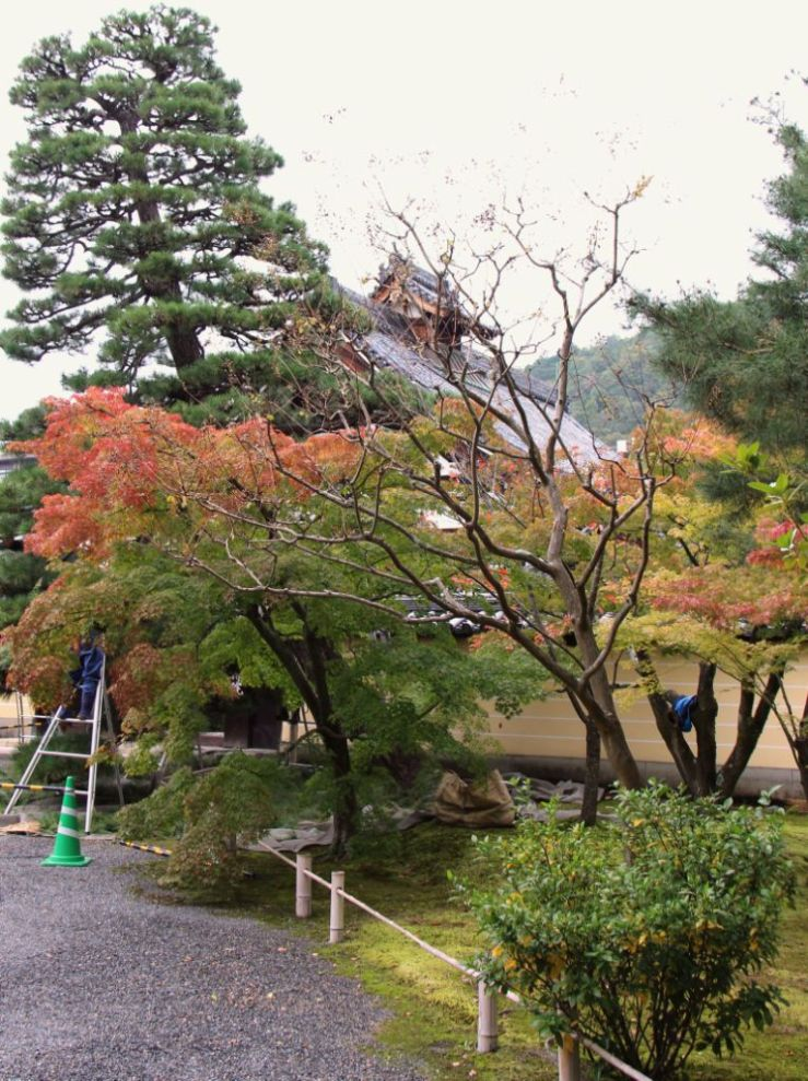 toji-in-temple-38