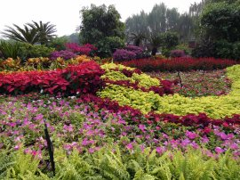 Beihai Park (6)