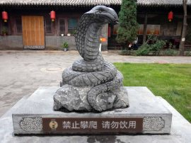 Cheng Huang Temple (5)