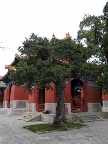 Confuciustempel (13)