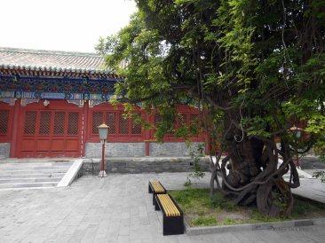 Confuciustempel (40)