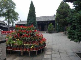 Confuciustempel (44)