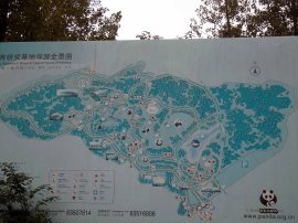 Giant Panda Research Centre (1)