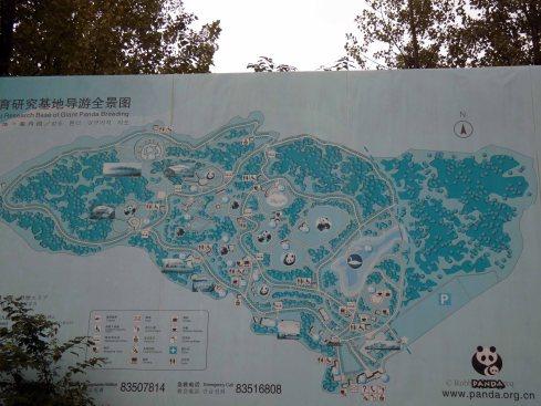 Giant Panda Research Centre (1)